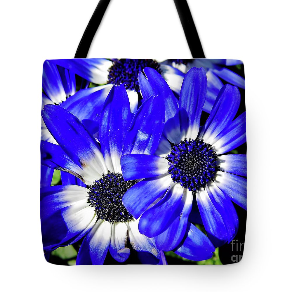 Daisy Tote Bag featuring the photograph Blue Beauty by D Hackett