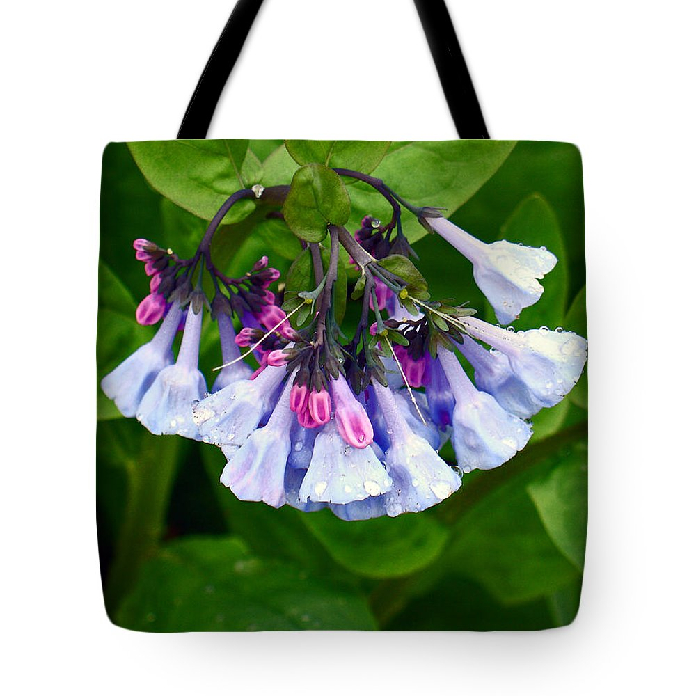 Native Landscape Tote Bag featuring the photograph Blue Bells by Steve Karol