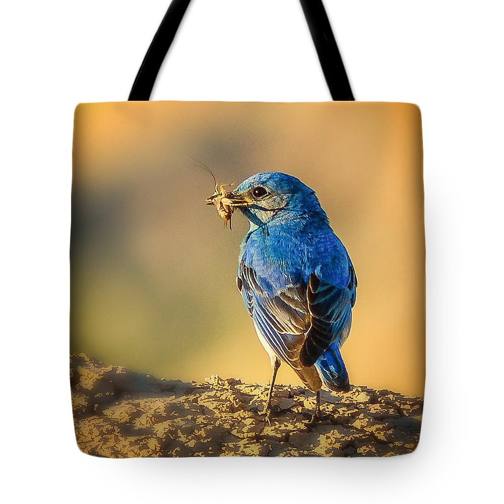 Animals Tote Bag featuring the photograph Blue Bird With Breakfast by Rikk Flohr