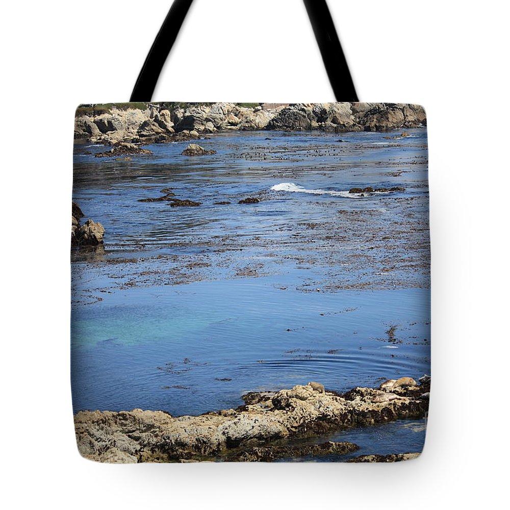 California Tote Bag featuring the photograph Blue California Bay by Carol Groenen