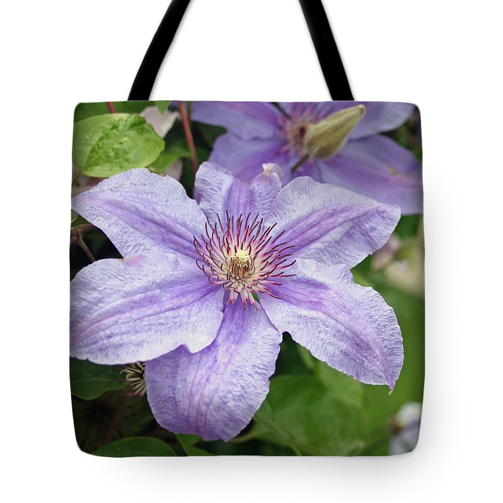 Clematis Tote Bag featuring the photograph Blue Clematis by Margie Wildblood