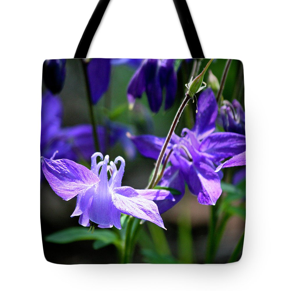 Columbine Tote Bag featuring the photograph Blue Columbine Squared 3 by Teresa Mucha