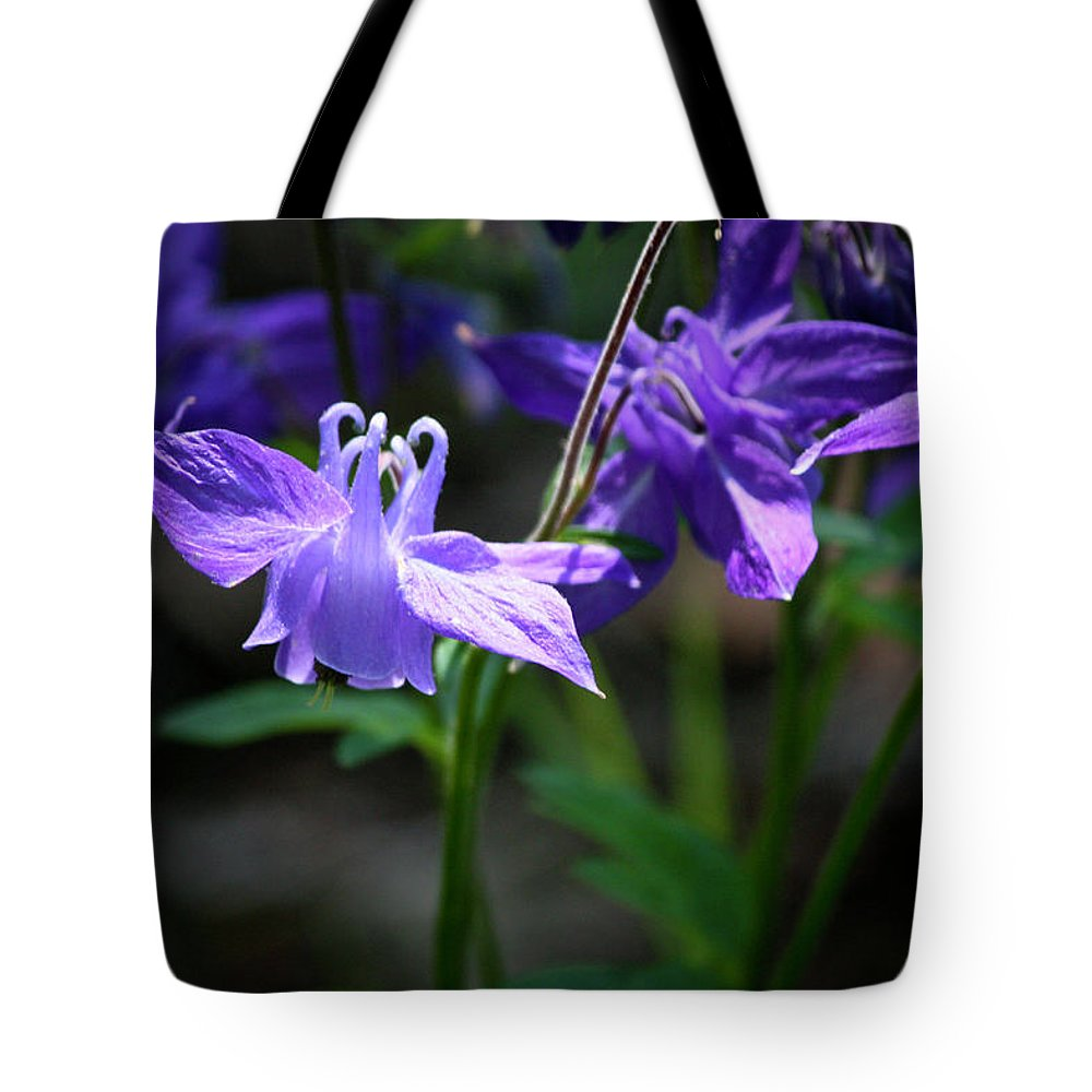 Columbine Tote Bag featuring the photograph Blue Columbines by Teresa Mucha