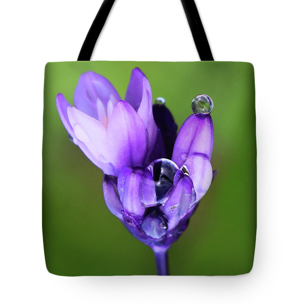 Blue Dick Tote Bag featuring the photograph Blue Dick Balance by Erin Donalson