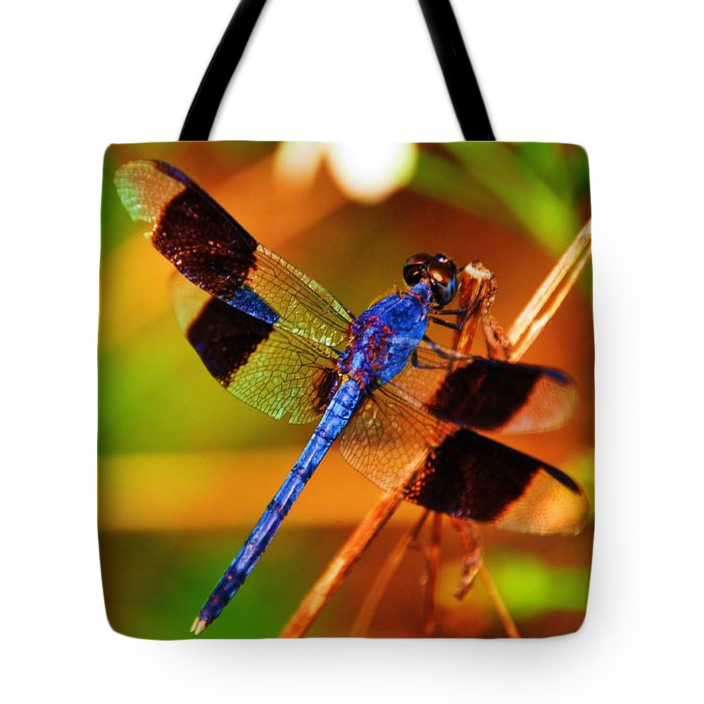Dragonfly Tote Bag featuring the photograph Blue Dragonfly by Randy Aveille