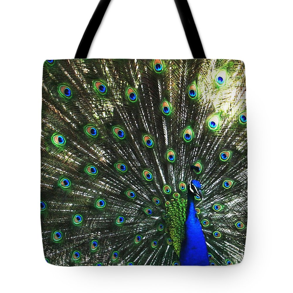 Peacock Tote Bag featuring the photograph Blue Eyes by Linda Sannuti