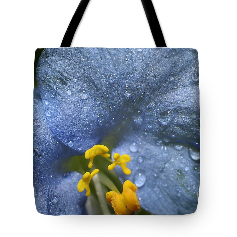 Flower Tote Bag featuring the photograph Blue Spring Flower by Jordan Marsh
