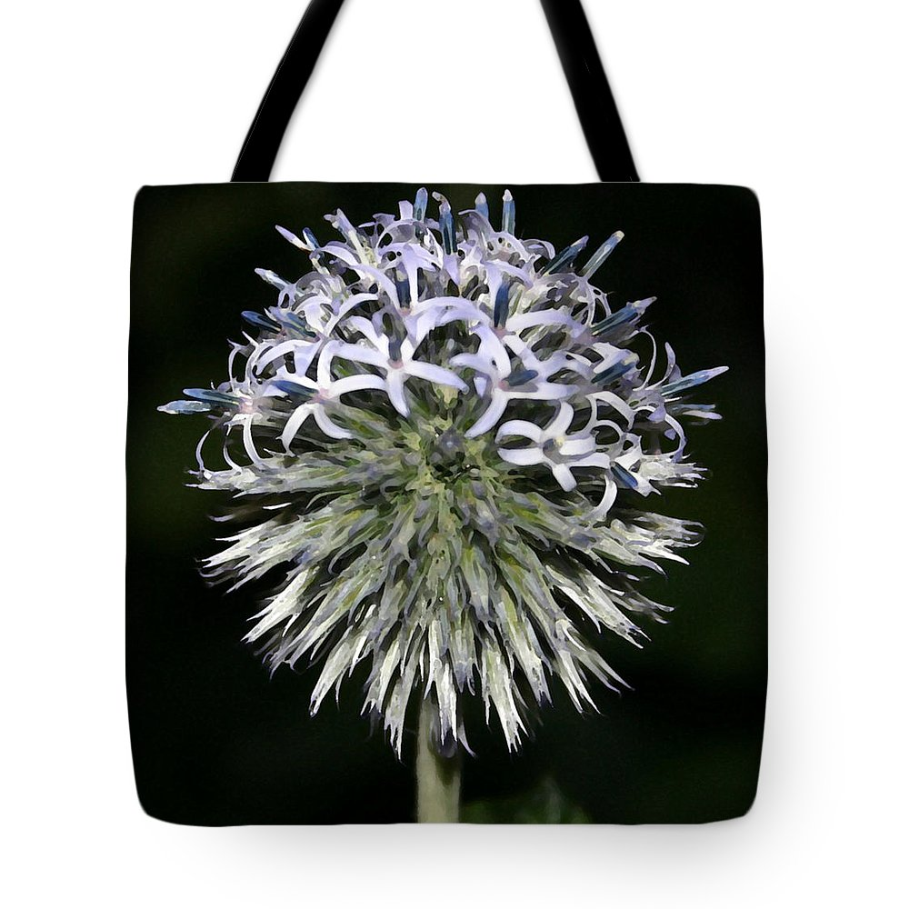 Landscape Tote Bag featuring the photograph Blue Globe by Mary Haber
