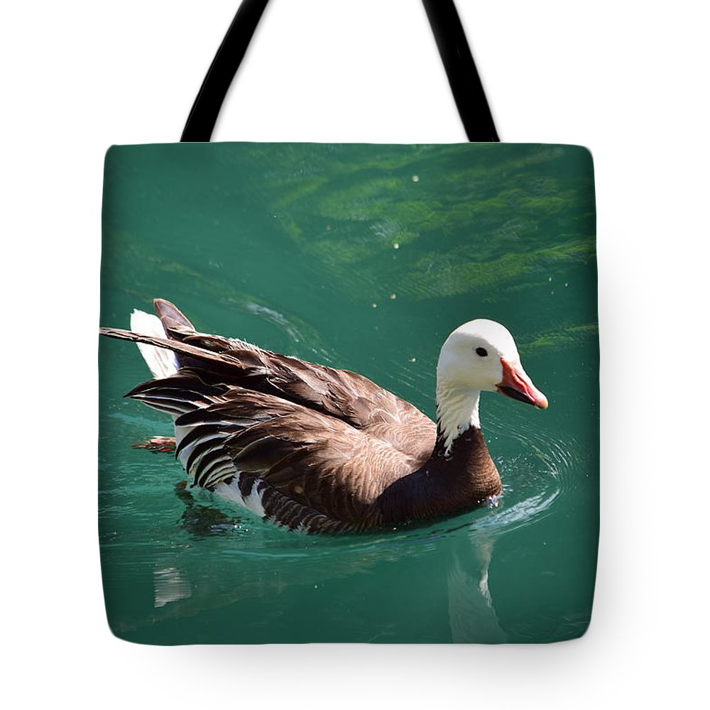 Bird Tote Bag featuring the photograph Blue Goose-3 by Floyd Kauffman