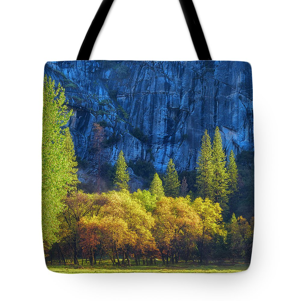 Aspen Tote Bag featuring the photograph Blue Granite by Jens Peermann