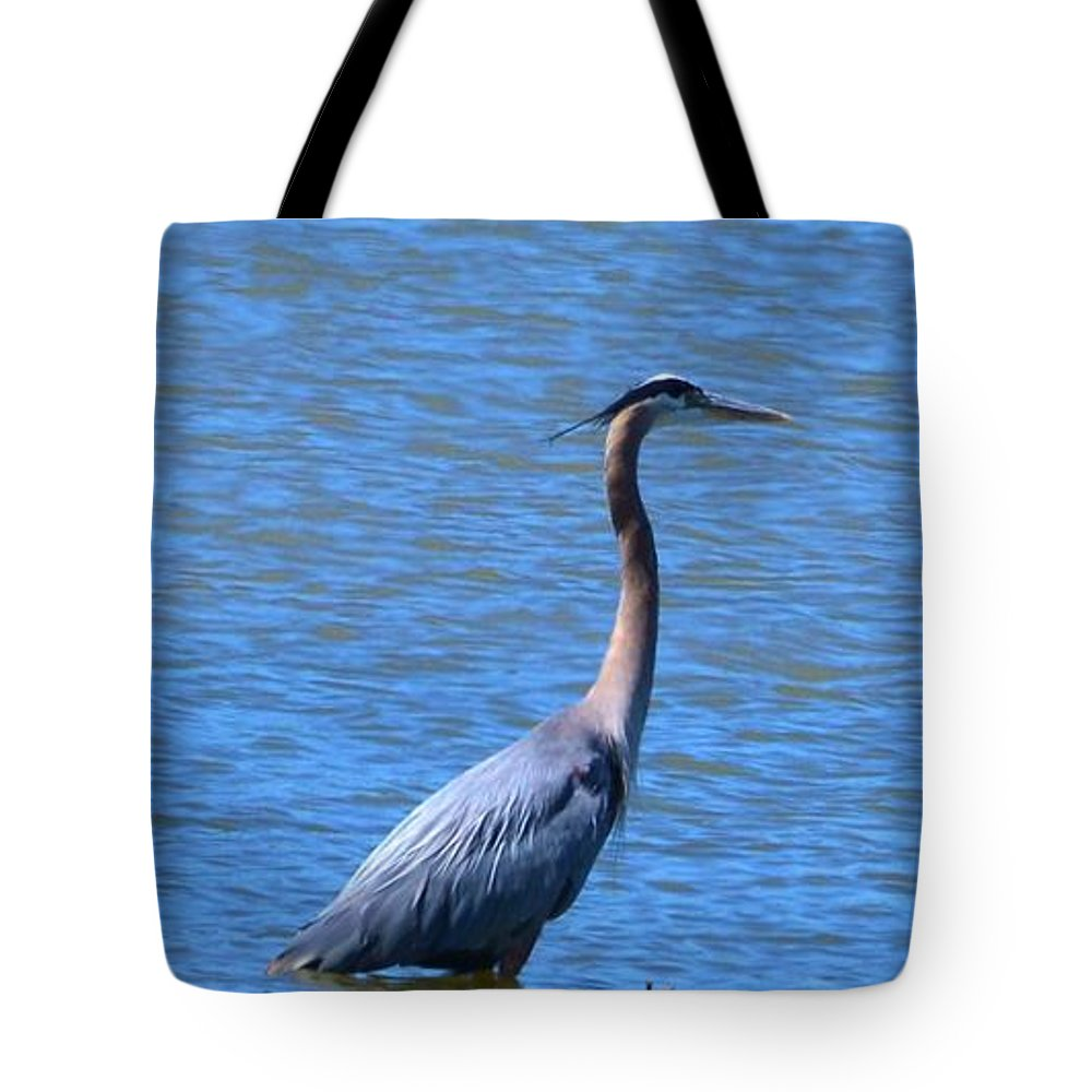 Heron Tote Bag featuring the photograph Blue Heron by Eileen Brymer