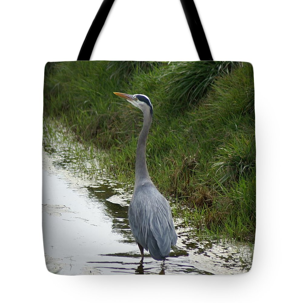 Heron Tote Bag featuring the photograph Blue Heron by Louise Magno