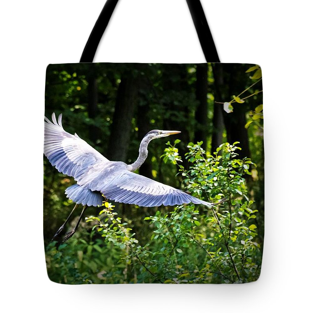 Blue Heron Tote Bag featuring the photograph Blue Heron On The Move by Lawrence Golla