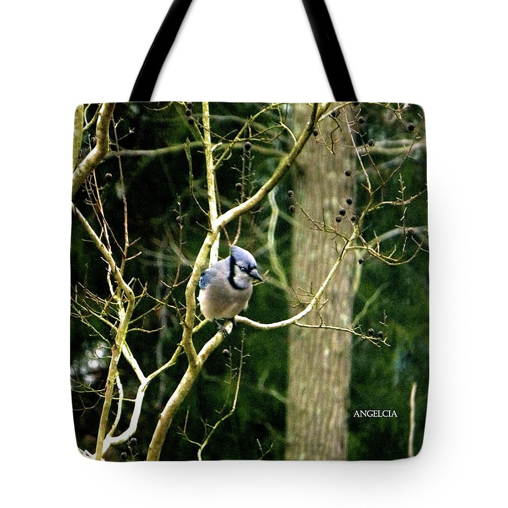 Birds Of The Wild Tote Bag featuring the photograph Blue Jay by Angelcia Wright