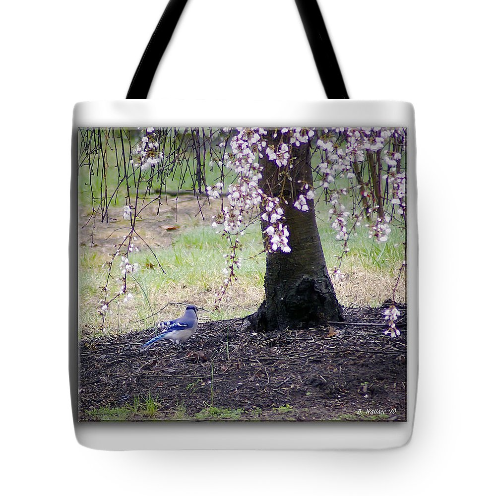2d Tote Bag featuring the photograph Blue Jay by Brian Wallace