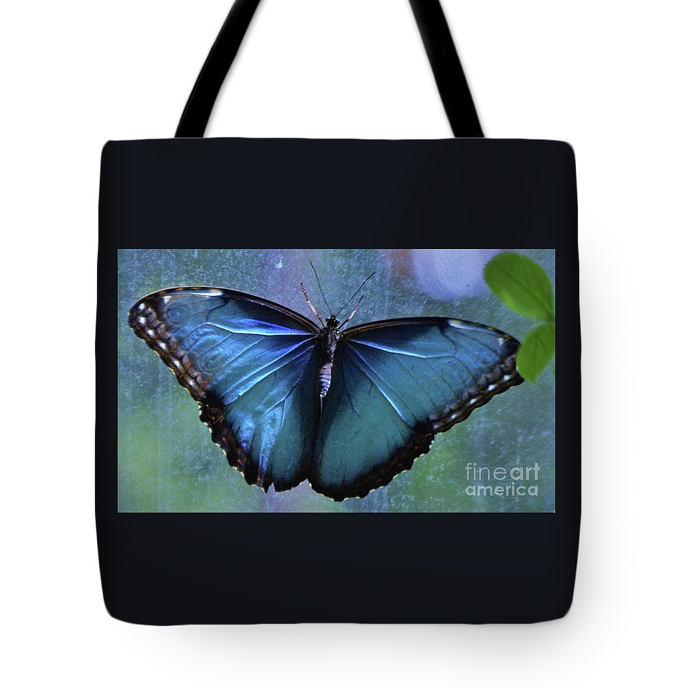 Butterfly Art Nature Blue Wings Minimal Delicate Creature Animal Portrait Canvas Print Metal Frame Poster Print Wood Print Available On Greeting Cards T Shirts Mugs Shower Curtains Tote Bags Throw Pillows Pouches Weekender Tote Bags Beach Towels And Phone Cases Tote Bag featuring the photograph Blue Morpho Butterfly Portrait by Marcus Dagan