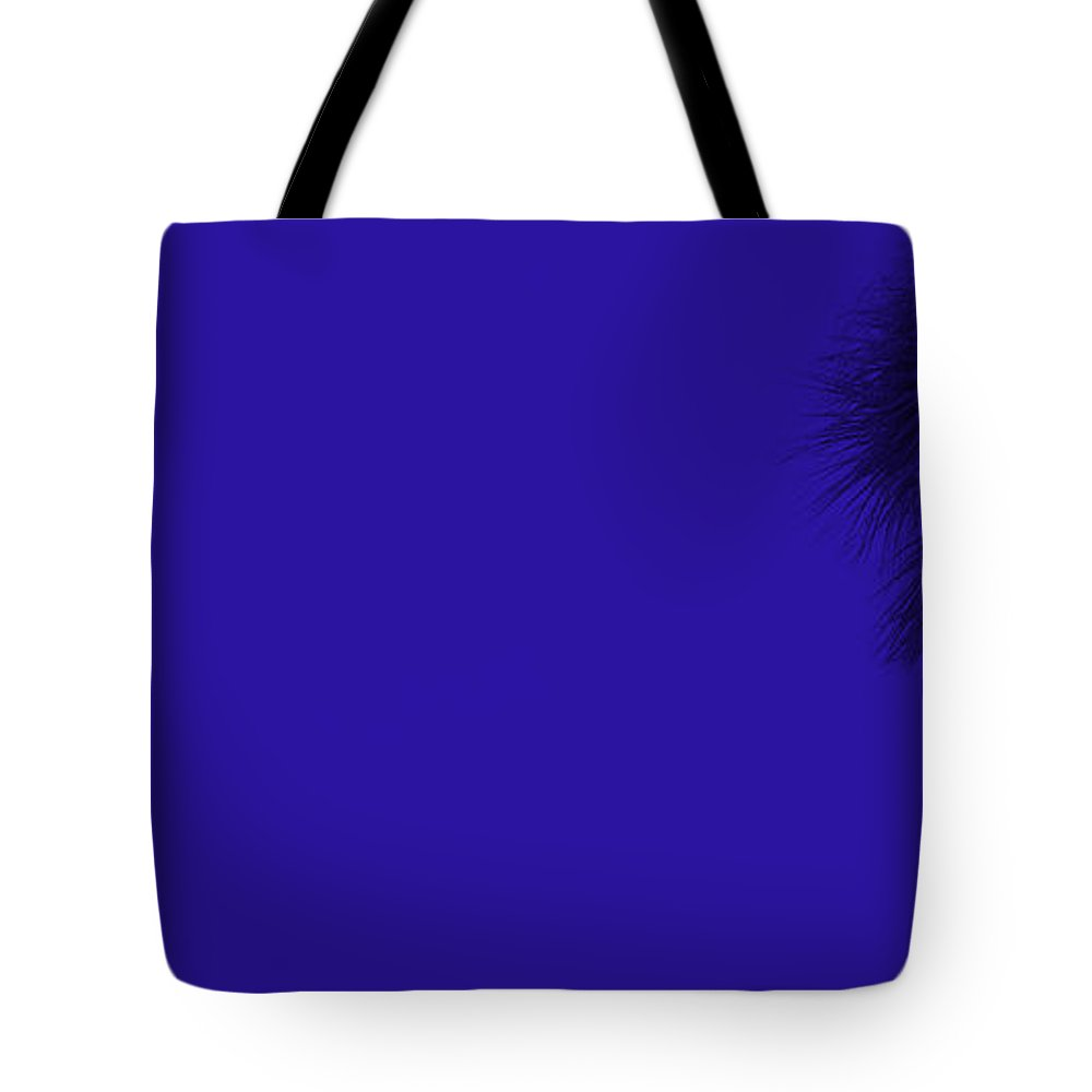 Landscape Tote Bag featuring the photograph Blue Palm by Ed Smith