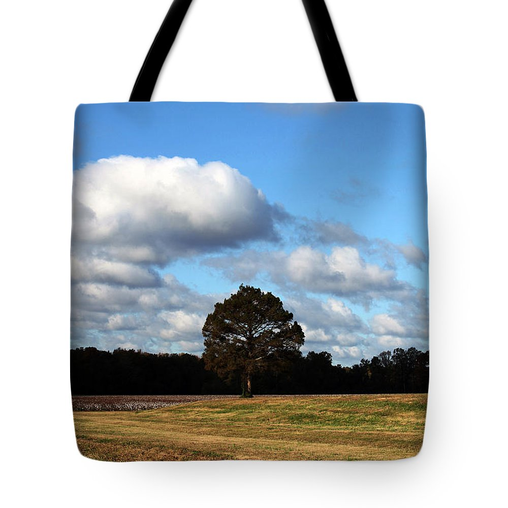 Trees Tote Bag featuring the photograph Blue Skies by Amanda Barcon