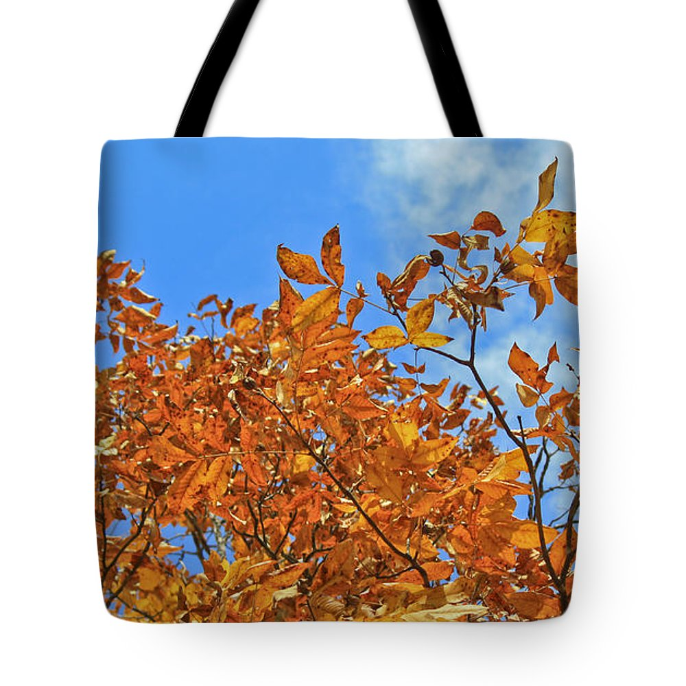 Fall Tote Bag featuring the photograph Blue Sky by Teresa Mucha