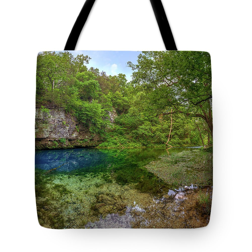 Spring Tote Bag featuring the photograph Blue Springs II by Robert Charity
