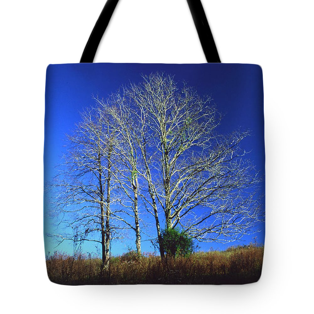 Landscape Tote Bag featuring the photograph Blue Tree In Tennessee by Randy Oberg