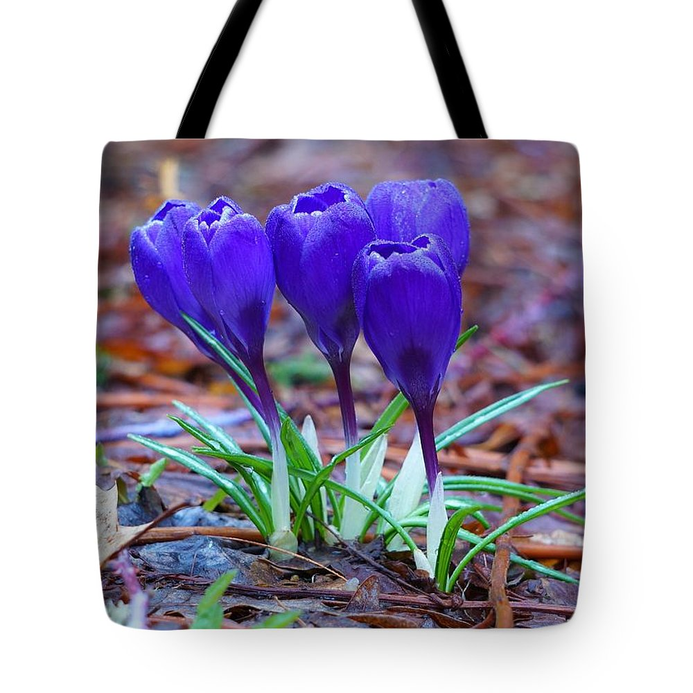 Flowers Tote Bag featuring the photograph Blue Crocus by Kevin Vautrinot