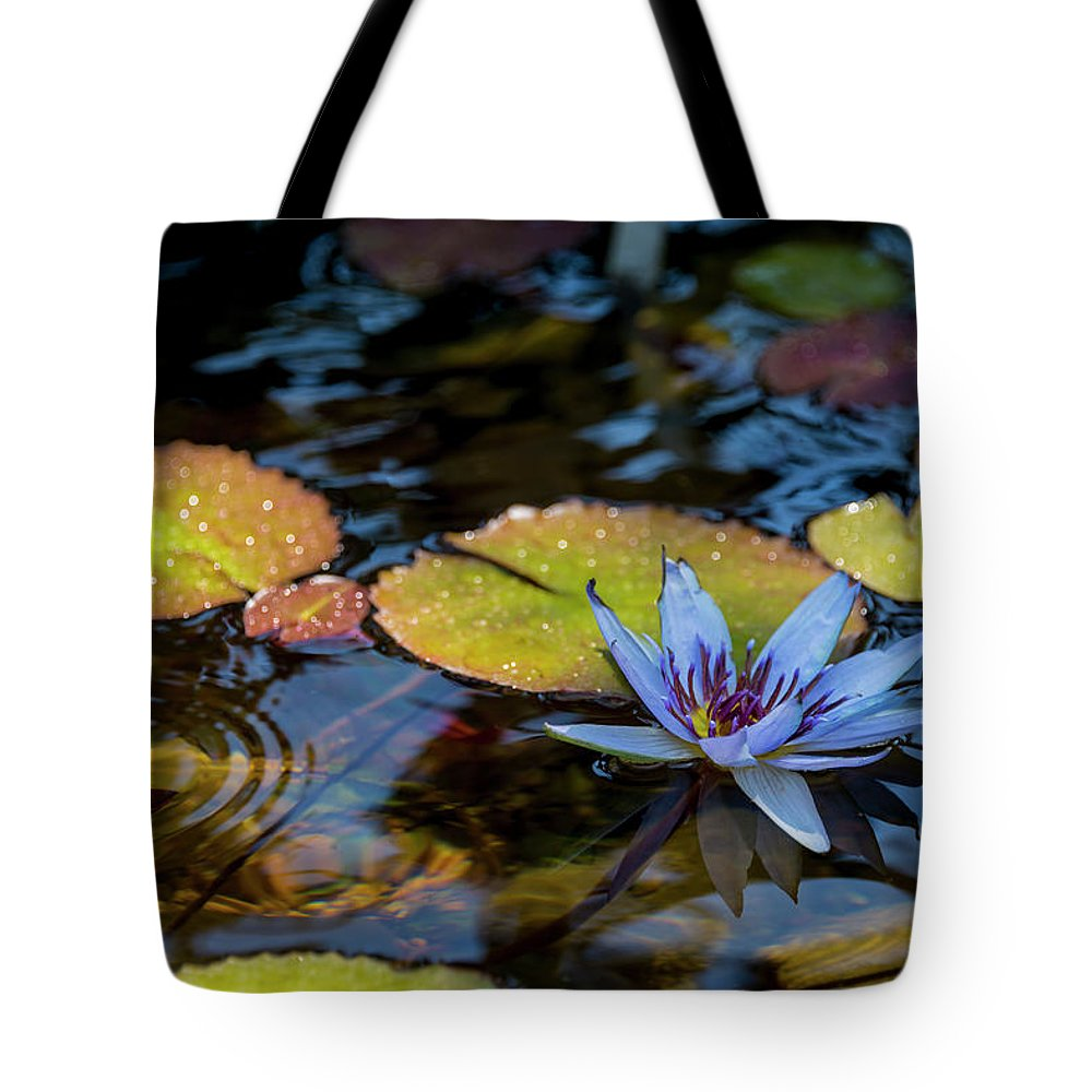 Blue Water Lily Flower Pond Tote Bag featuring the photograph Blue Water Lily Pond by Brian Harig