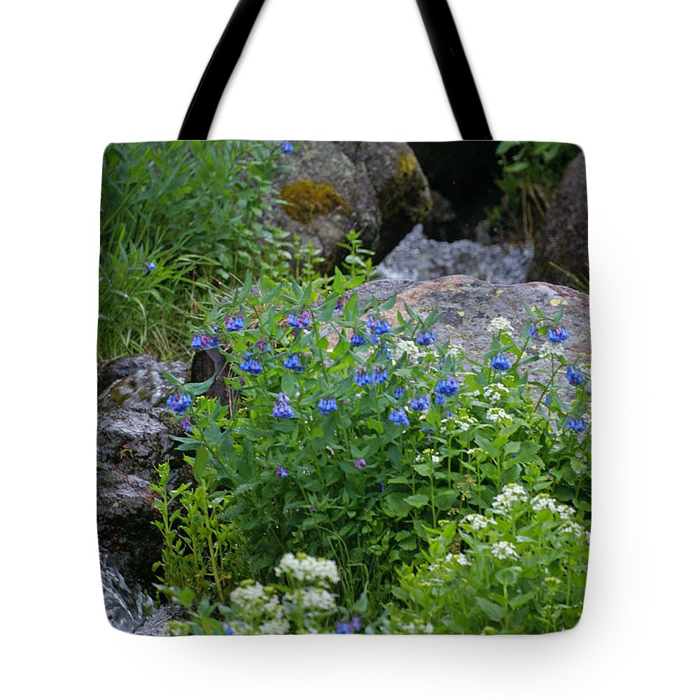 Wildflowers Tote Bag featuring the photograph Bluebells by Heather Coen