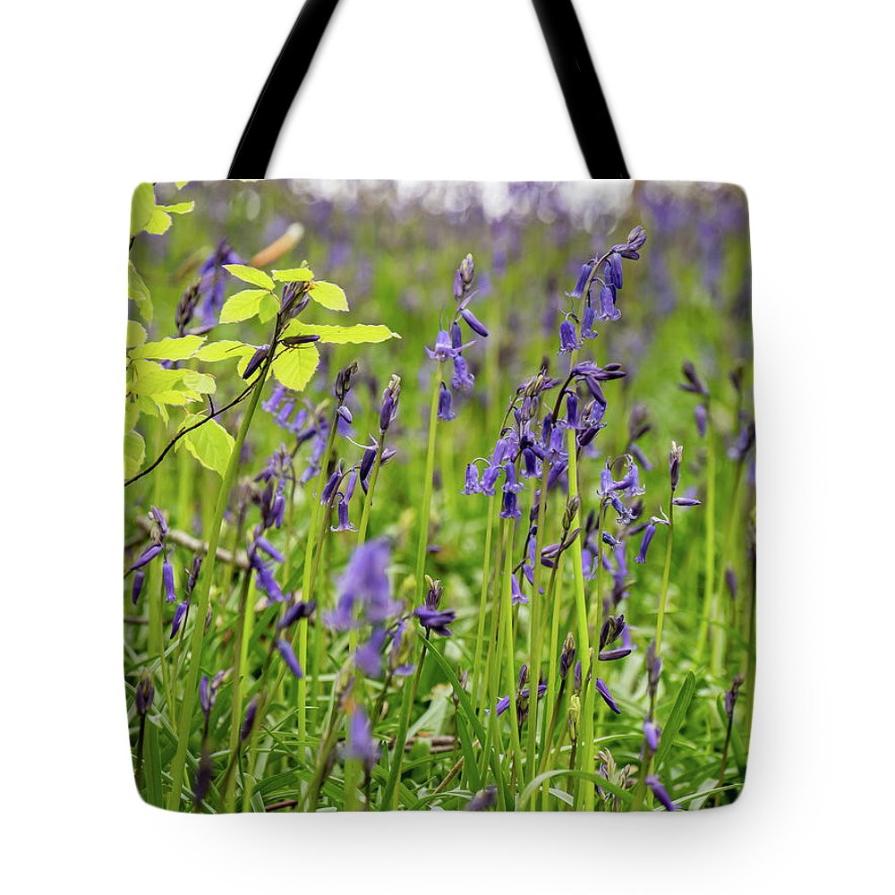 Judy Woods Tote Bag featuring the photograph Bluebells In Judy Woods by Mike Walker