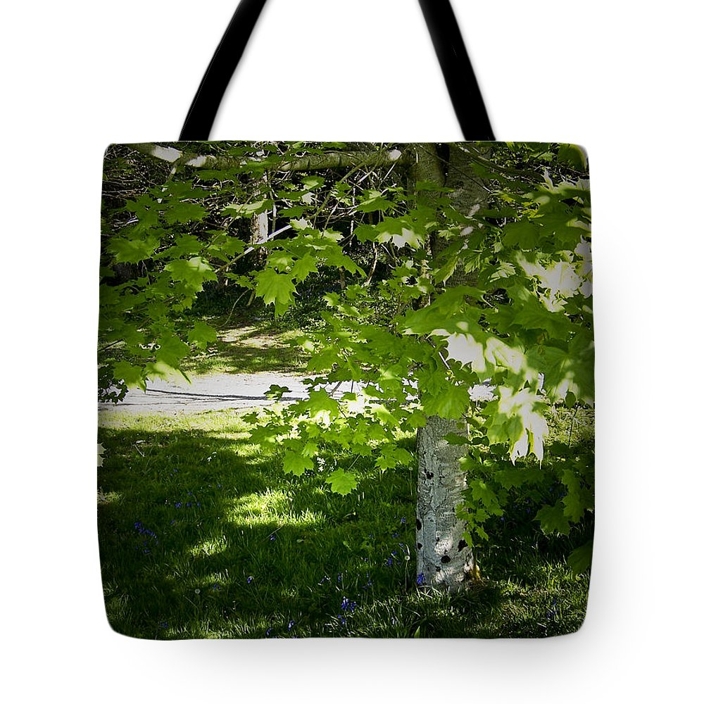 Irish Tote Bag featuring the photograph Bluebells In Killarney National Park Ireland by Teresa Mucha