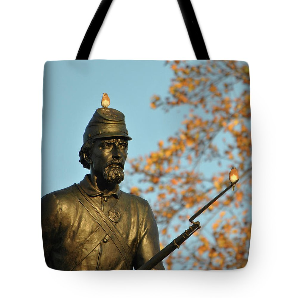 Civil War Tote Bag featuring the photograph Bluebirds And Minnesota by Jen Goellnitz