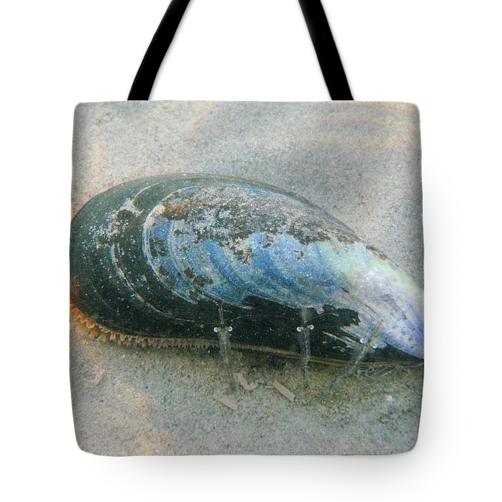 Shell Tote Bag featuring the photograph Blues Brothers by Are Lund