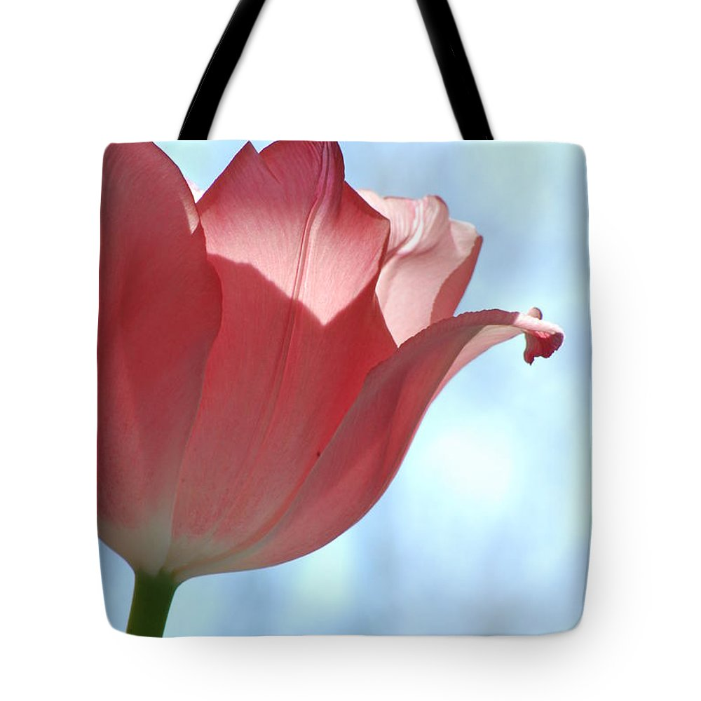 Tulip Tote Bag featuring the photograph Blush by Michelle Hastings