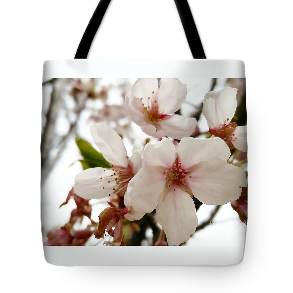 Flowers Tote Bag featuring the photograph Blushed 2 by Mioara Andritoiu
