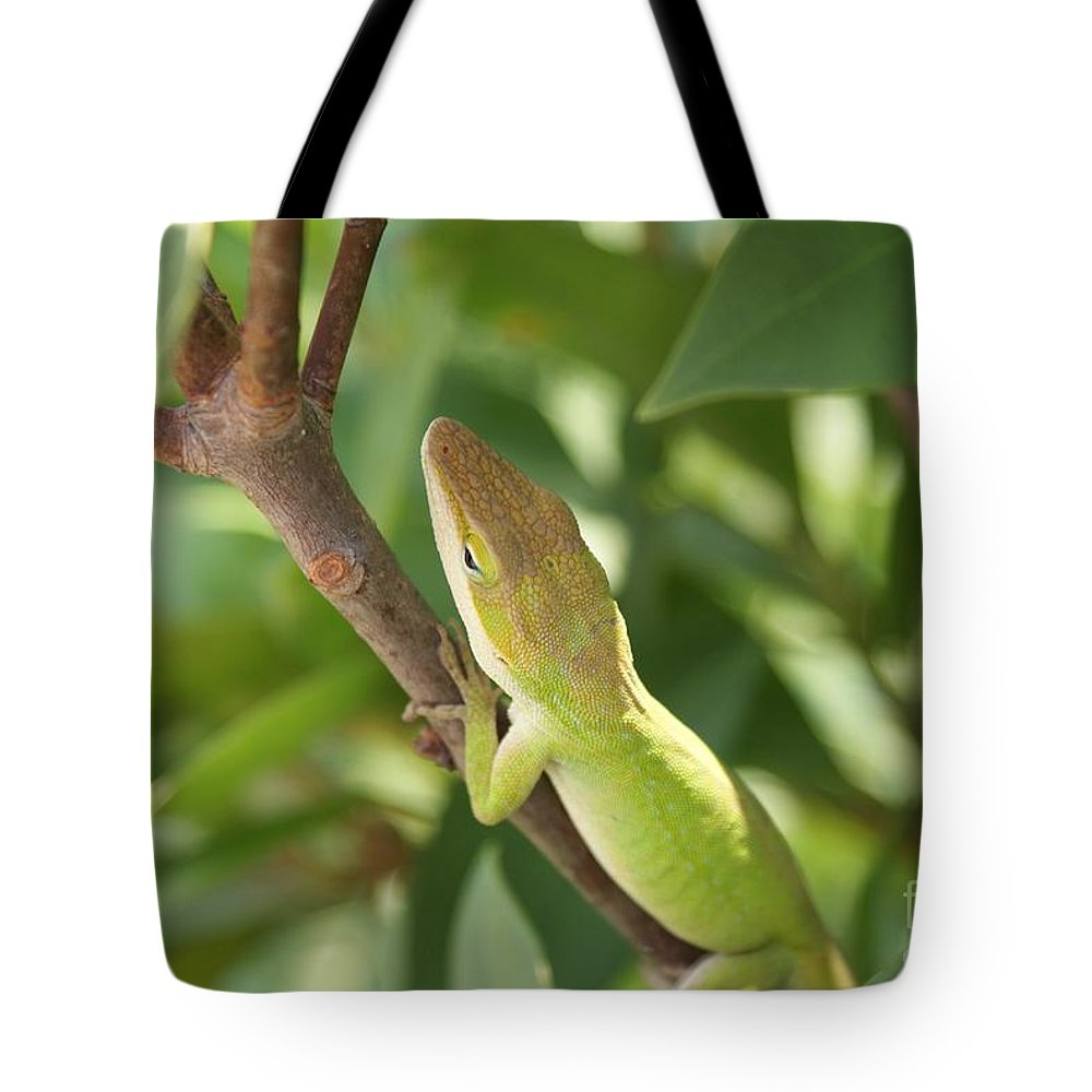 Lizard Tote Bag featuring the photograph Blusing Lizard by Shelley Jones