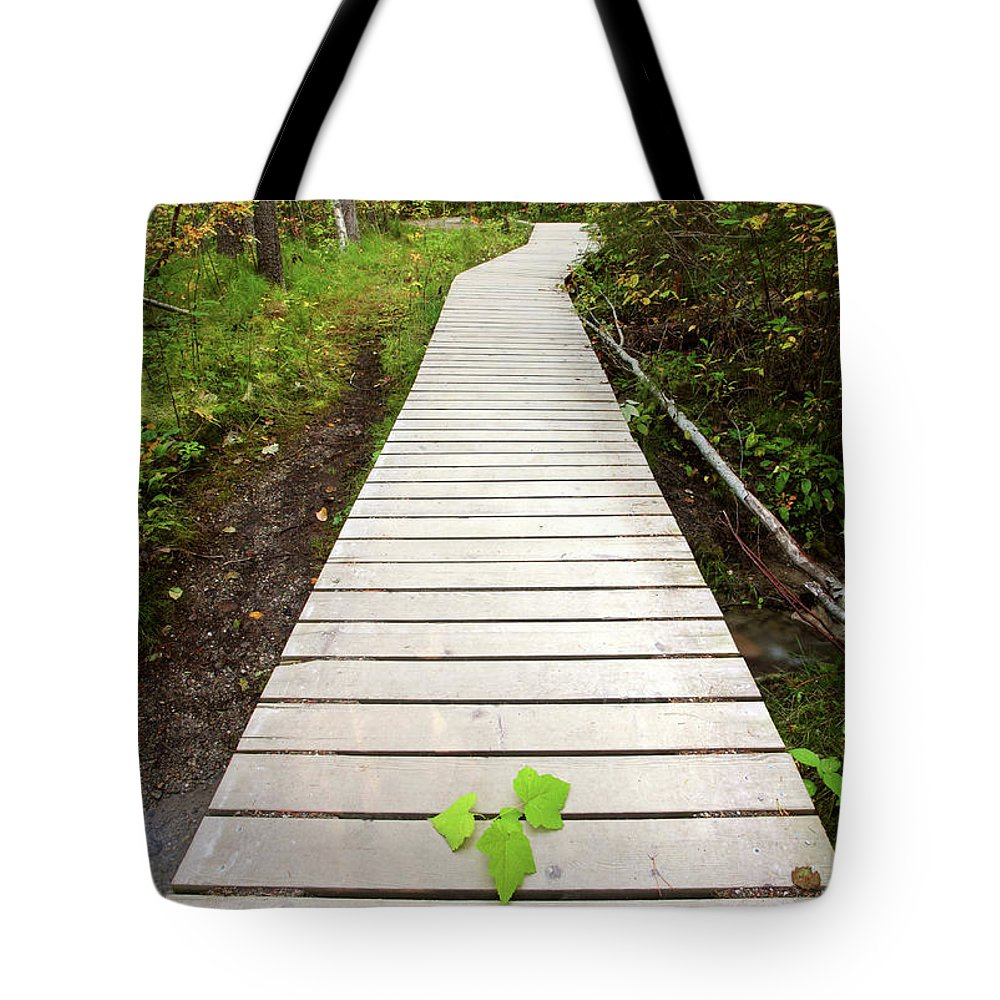 Bushes Tote Bag featuring the digital art Boardwalk To Backguard Falls In British Columbia by Mark Duffy