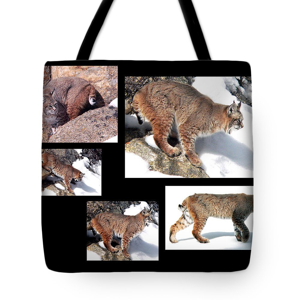 Bob Cat Tote Bag featuring the photograph Bob Cat by Mark Ivins