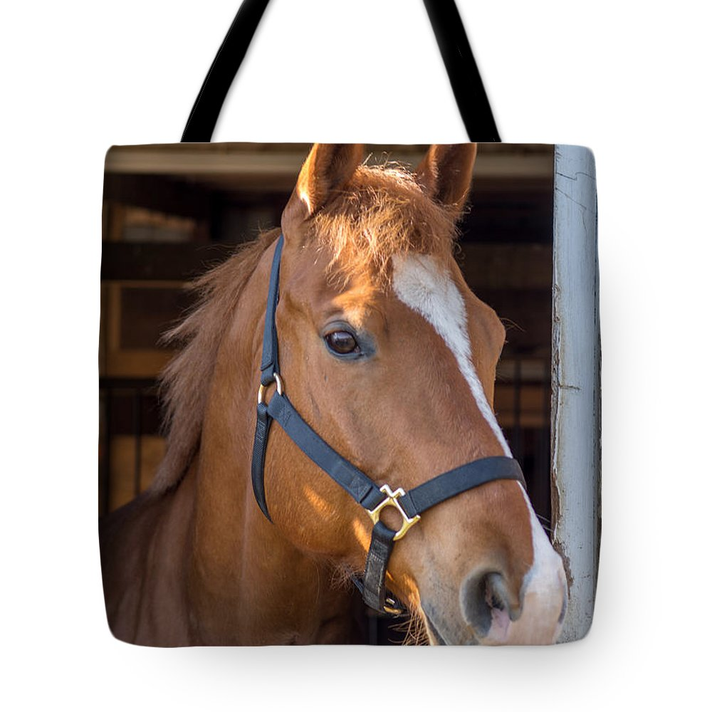 Charger Tote Bag featuring the photograph Bode 15058 by Guy Whiteley