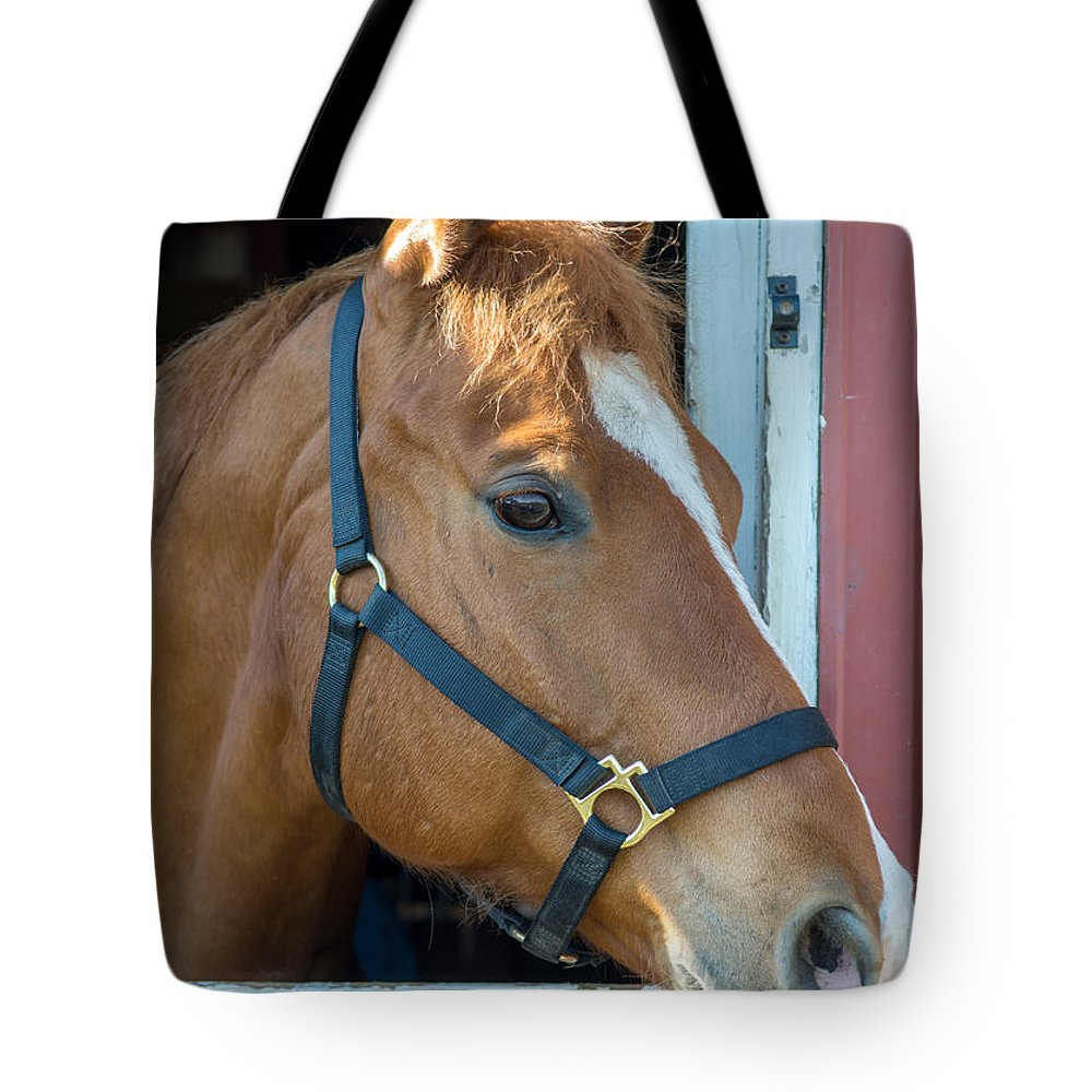 Charger Tote Bag featuring the photograph Bode 15061 by Guy Whiteley