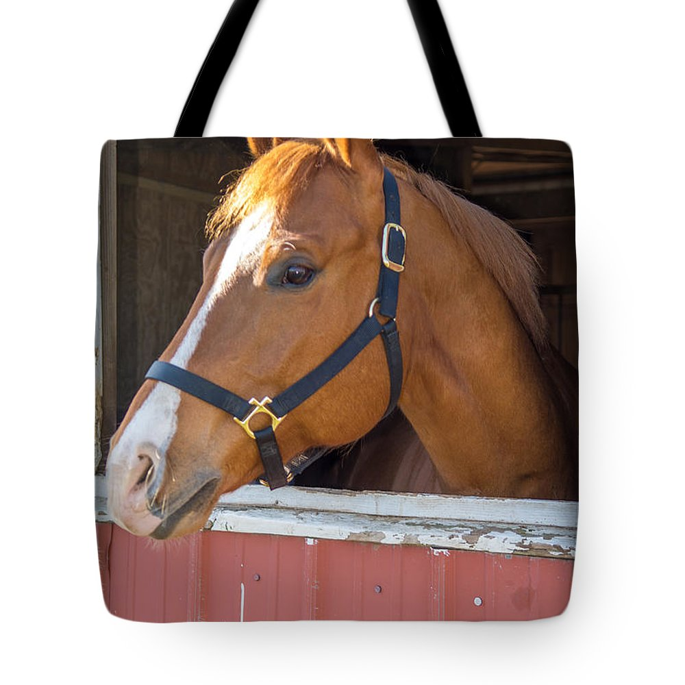 Charger Tote Bag featuring the photograph Bode 15068 by Guy Whiteley