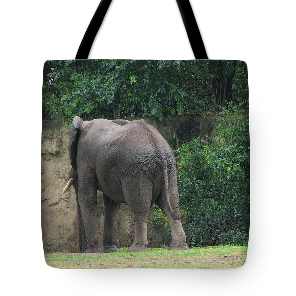 Elephant Tote Bag featuring the photograph Body Language II by Stacey May