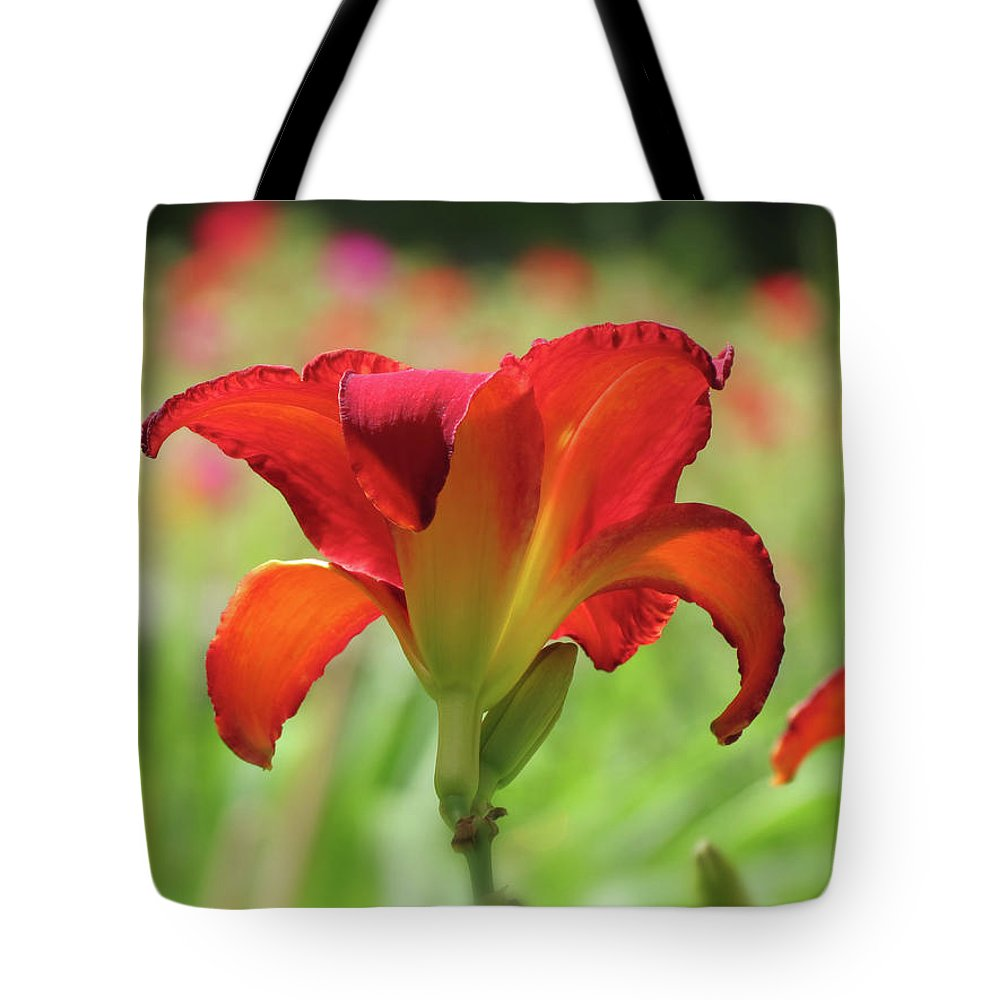 Chicago Apache Daylily Tote Bag featuring the photograph Bold Red - Daylily by MTBobbins Photography