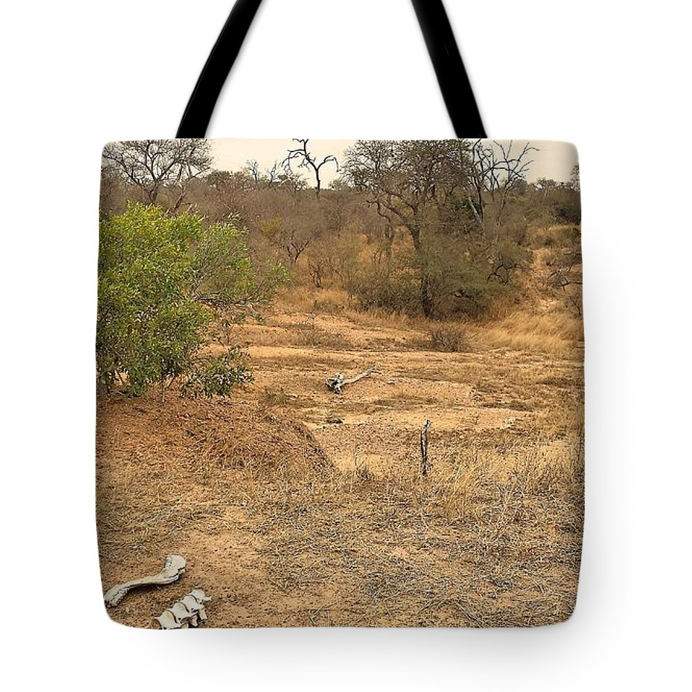 Bones Tote Bag featuring the photograph Bones by Lisa Byrne