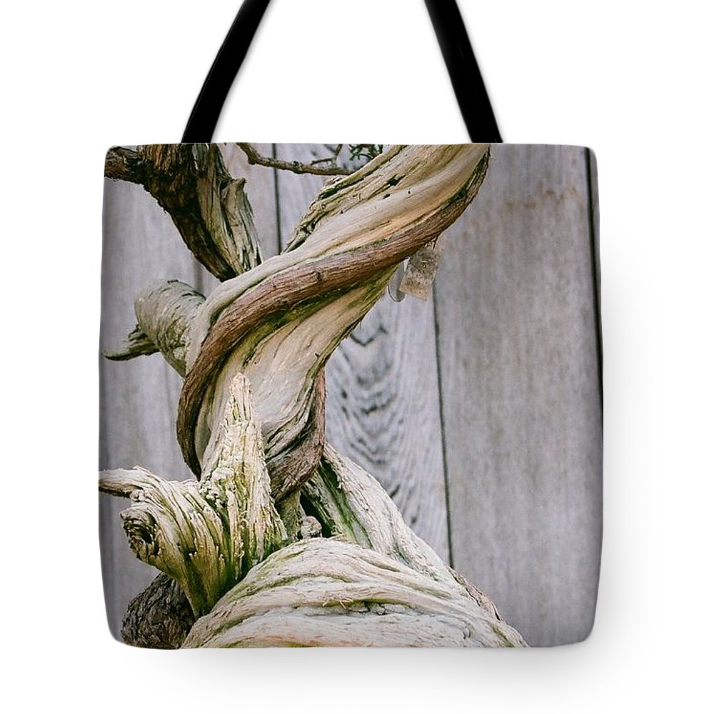 Tree Tote Bag featuring the photograph Bonsai by Dean Triolo