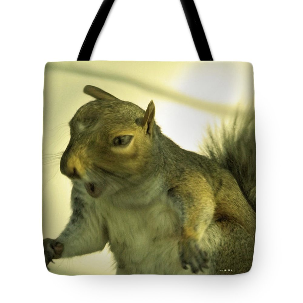 Squirrel Tote Bag featuring the photograph Bossy Squirrel by Angelcia Wright