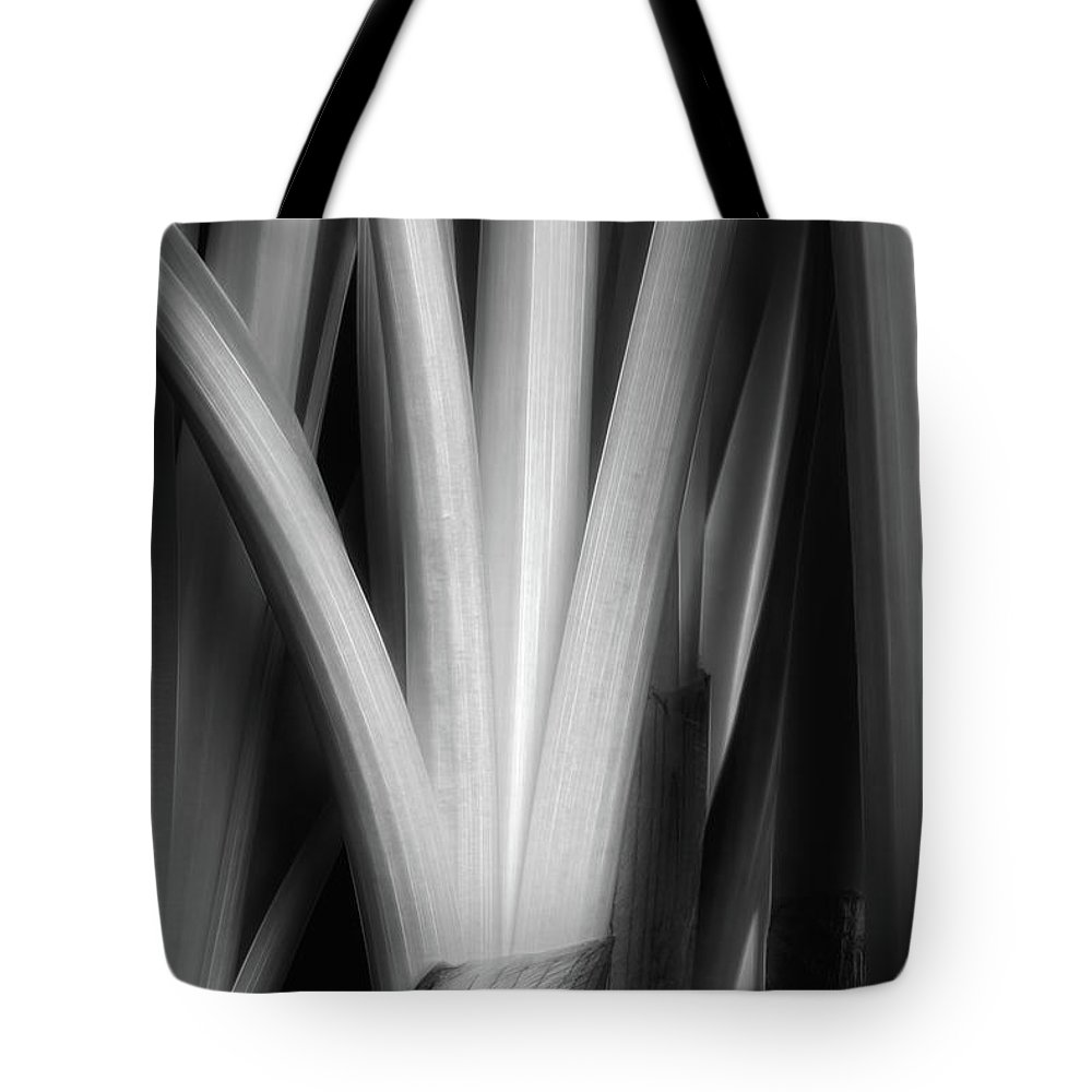 Plant Tote Bag featuring the photograph Botanical Abstract II by Tom Mc Nemar
