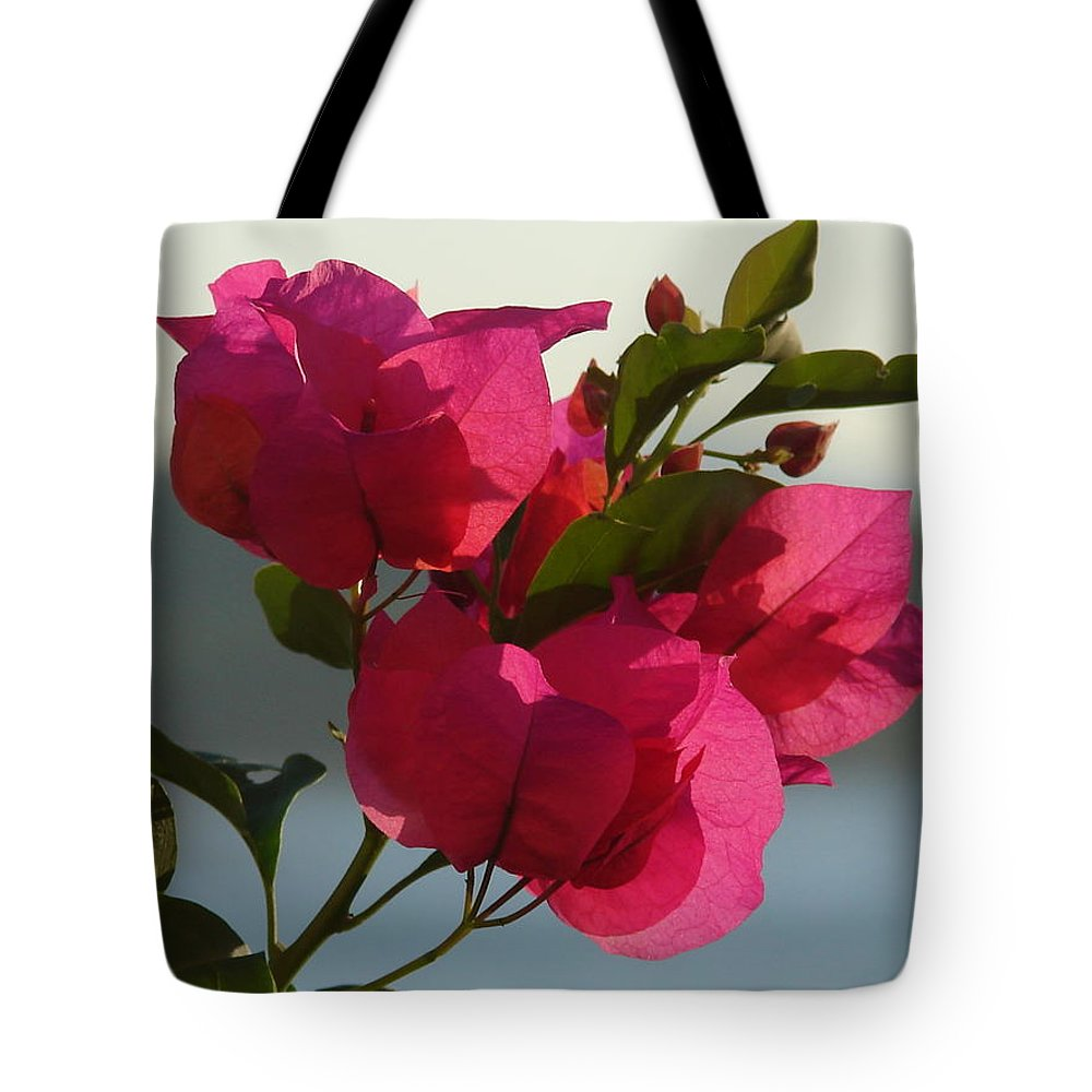 Tote Bag featuring the photograph Bougainvilla by Luciana Seymour