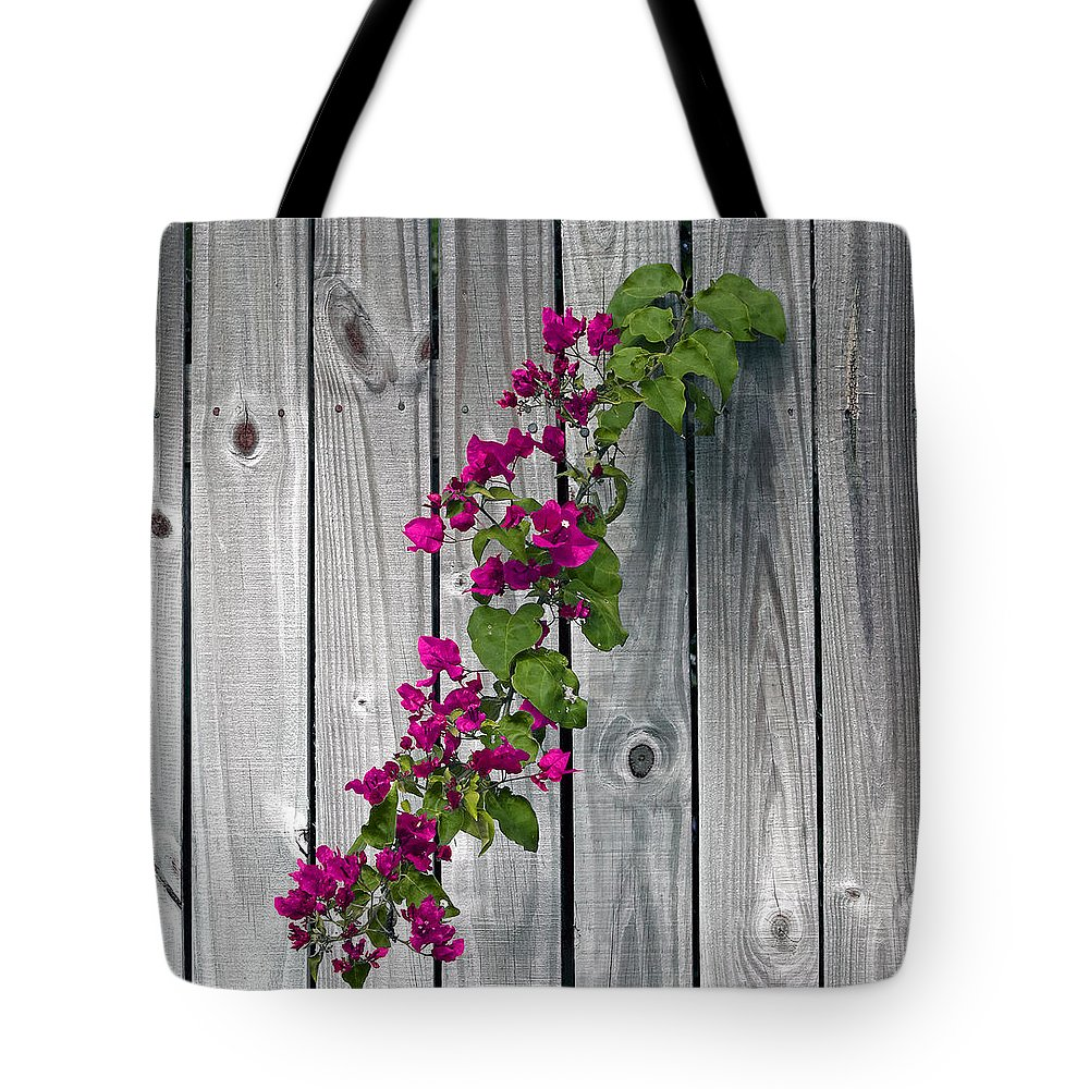 Flower Tote Bag featuring the photograph Bougainvillea Glabra by Allan Hughes