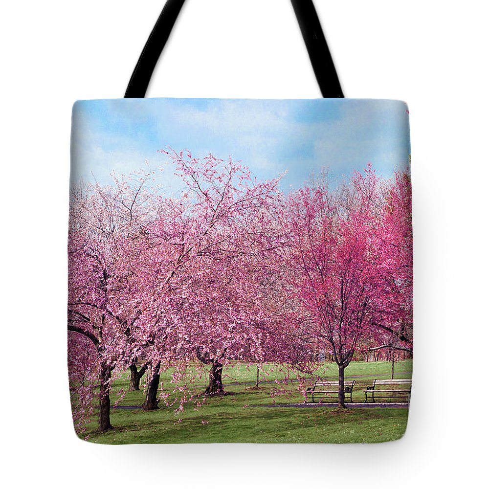 Branch Brook Park Cherry Blossoms 2013 Tote Bag featuring the photograph Branch Brook Cherry Blossoms by Regina Geoghan
