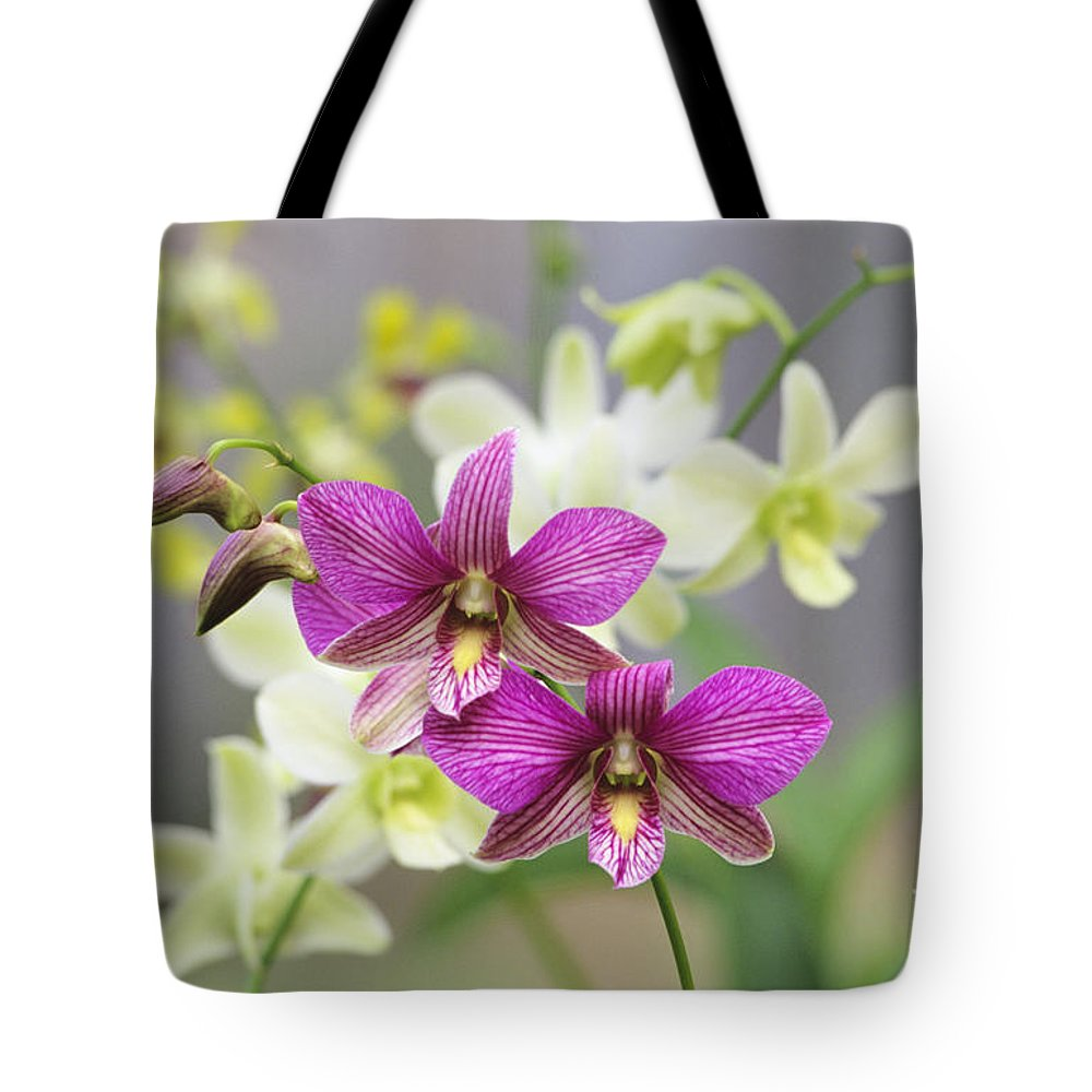 Afternoon Tote Bag featuring the photograph Branch Of Pink by Allan Seiden - Printscapes